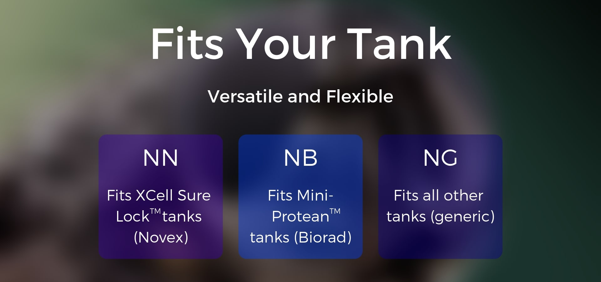 Precast Gel compatible with Bio-Rad, ThermoFisher, and most generic tanks